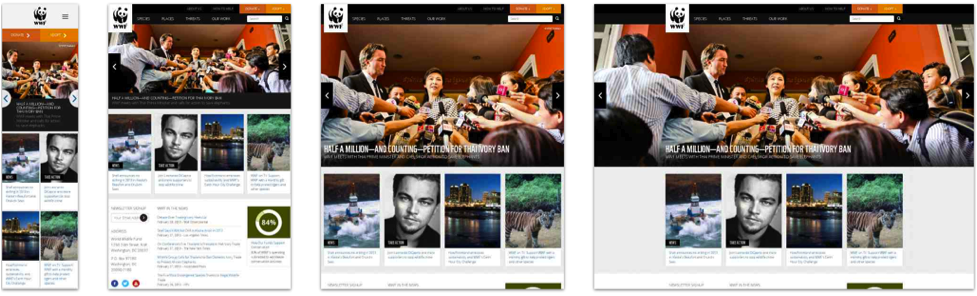 The World Wildlife Fund website